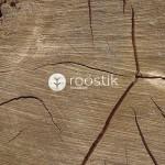 roostik-madera2