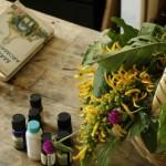 remedios-de-la-tierra (4)